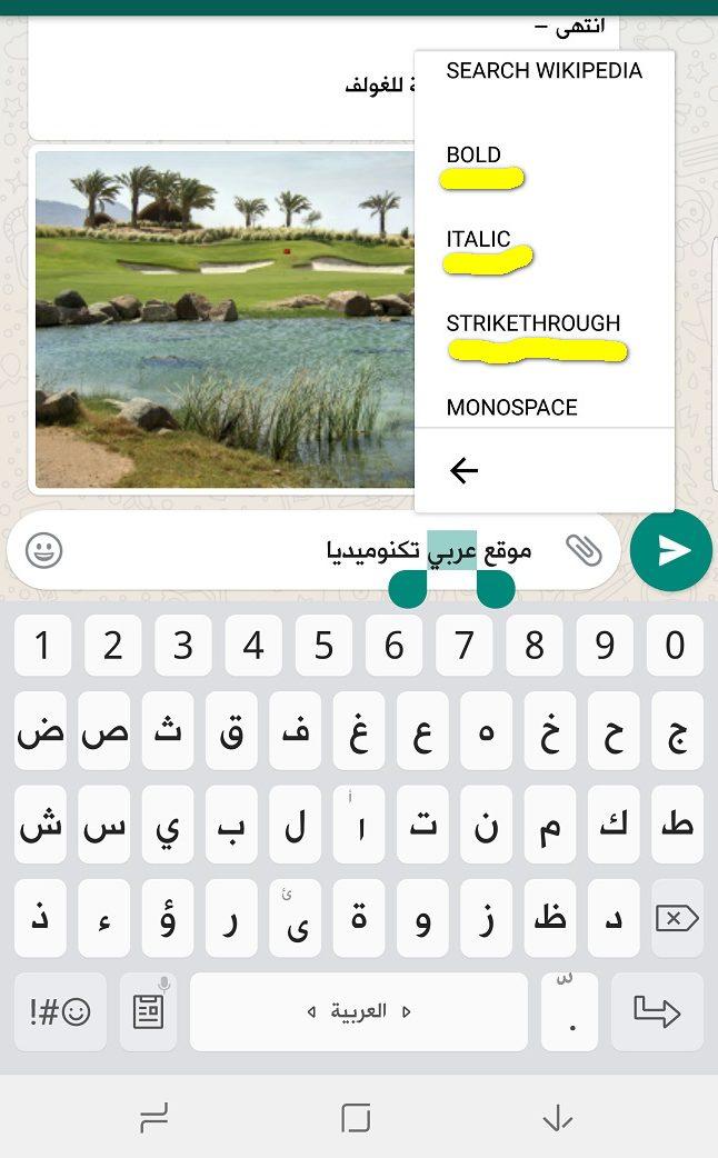 Screenshot 20170712 101409 e1499846084899 واتساب يطلق ميزة تغيير خط الرسائل ضمن قائمة عائمة