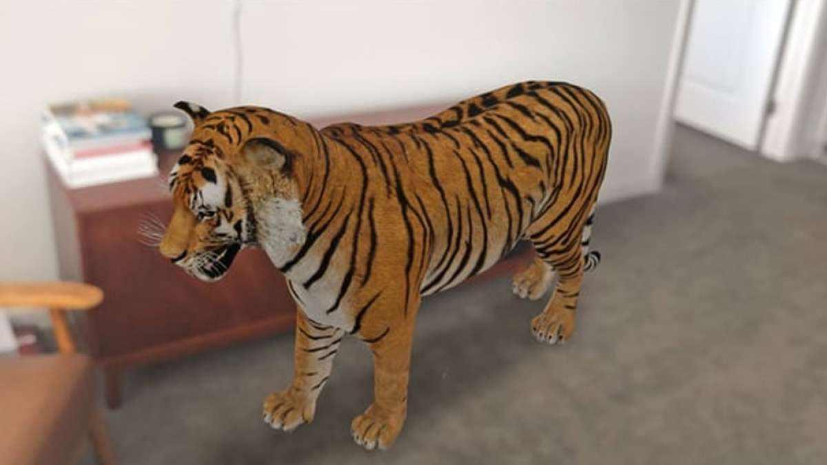 Google 3D Animals | كيفية استعمال تأثير AR في المنزل