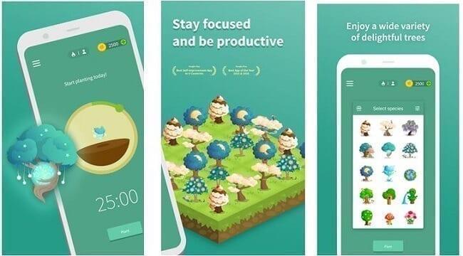 تطبيق Forest: Stay Focused