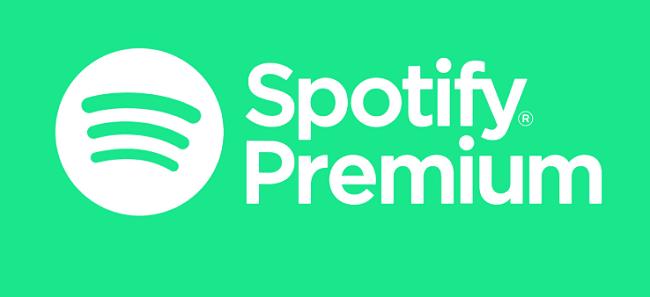 استخدام نسخة Premium Mini